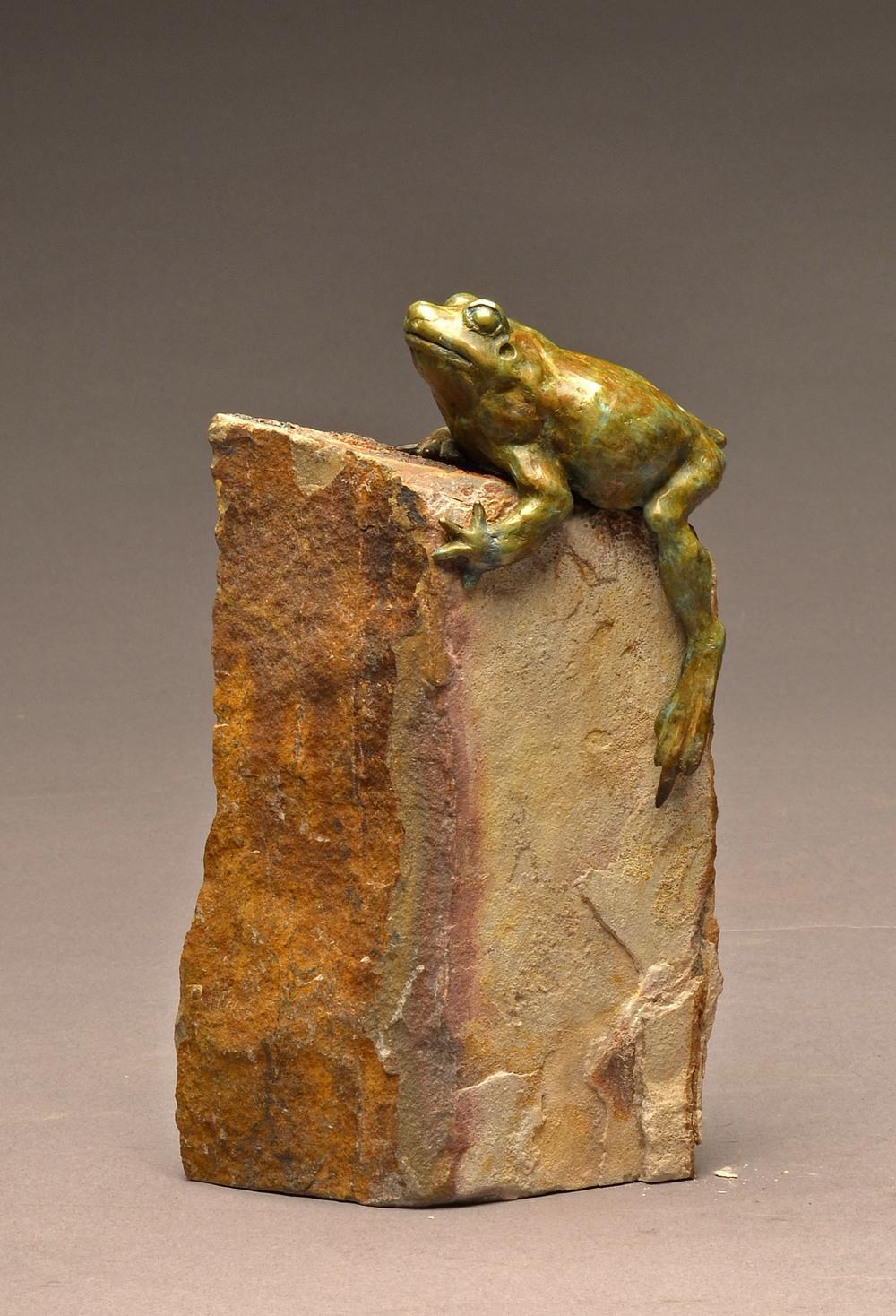 Spadefoot Toad - Savides Sculpture Sculpture Commissions One of a kind Sculpture