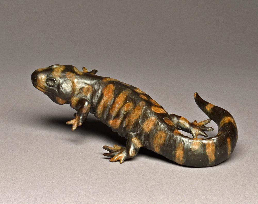 Tiger Salamander - Savides Sculpture Sculpture Commissions One of a kind Sculpture